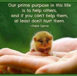 Help do not hurt Dalai Lama